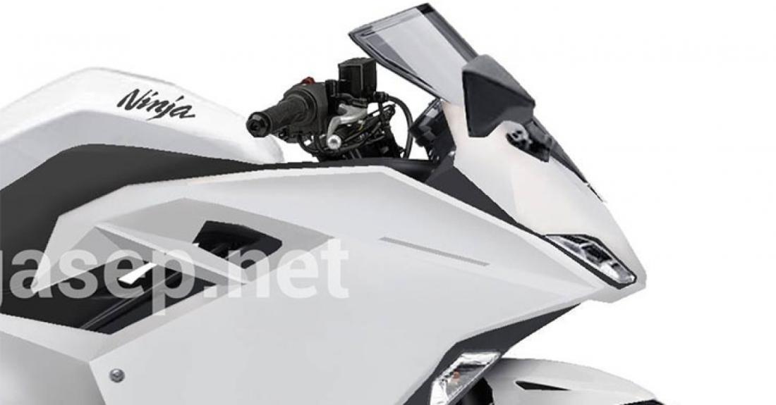 Flagra: Kawasaki Ninja 300